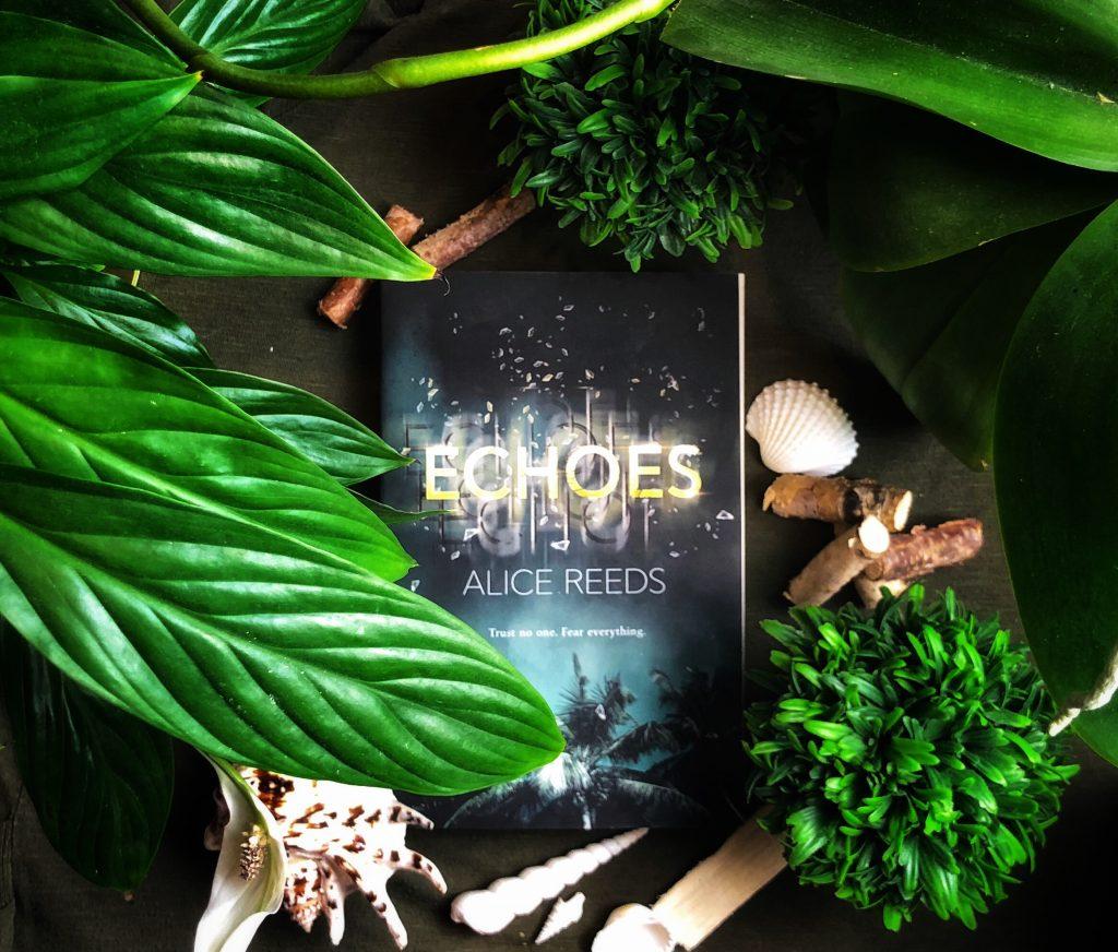 Echoes Buch